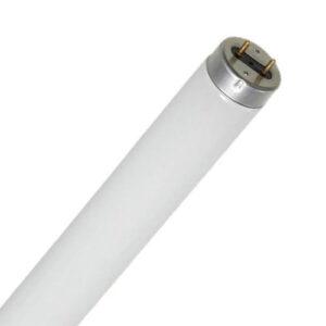 Lâmpada Tubular Fluorescente 2,40m