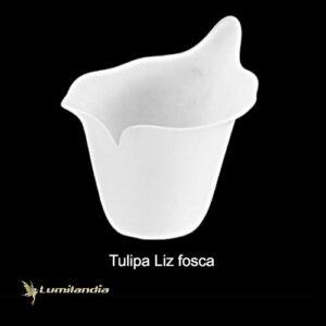 Tulipa Liz Copo de Leite de Vidro