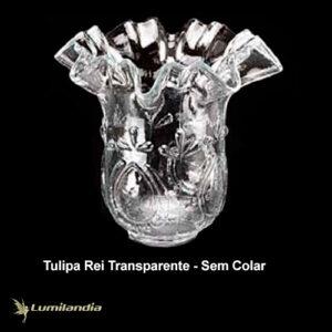 Tulipa Rei de Vidro sem Colar